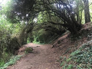 SS Hike 22